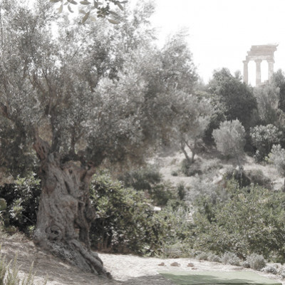 THE WONDERFUL KOLYMBETHRA GARDEN IN AGRIGENTO
